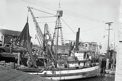 Photograph - Cerrito Bros Purse Seiner Monterey 1950 by California Views Archives Mr Pat Hathaway Archives