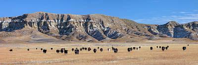 Photograph - Chalk Cliffs Panorama by Todd Klassy