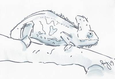 Drawing - Chameleon Black And White Watercolor Sketch by Mike Jory