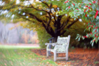 Photograph - Changing Seasons by Brian Hale