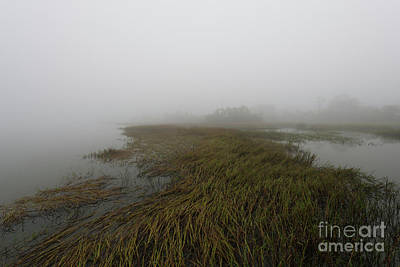 Photograph - Charleston Fog - Wando River by Dale Powell