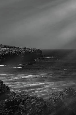 Photograph - Charming Coast Iv by Anne Leven