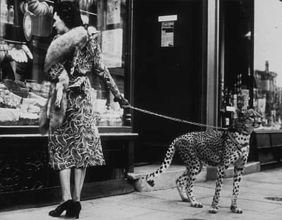 Cheetah Who Shops Art Print by B. C. Parade