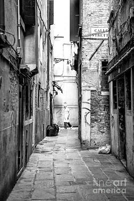 Photograph - Chef In The Alley Venice by John Rizzuto