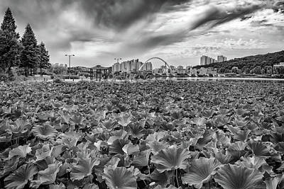 Photograph - Cheonhoji Pond In Black And White by Rick Berk