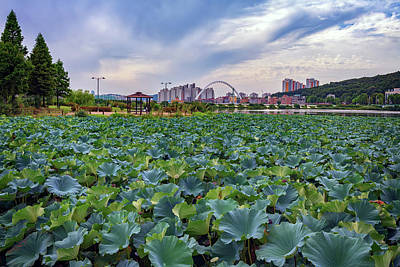 Photograph - Cheonhoji Pond by Rick Berk