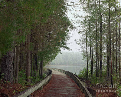 Photograph - Cheraw Boardwalk 2 by Patrick M Lynch
