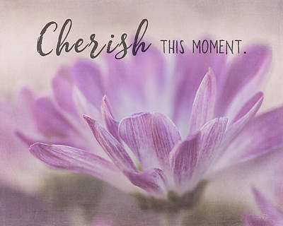 Photograph - Cherish This Moment by Teresa Wilson