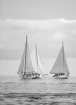 Photograph - Chesapeake Bay Skipjacks by Mark Duehmig