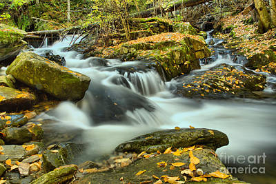 Photograph - Chester-blandford Stream by Adam Jewell