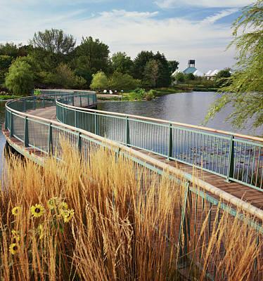 Botanical Photograph - Chicago Botanical Gardens by Richard Felber