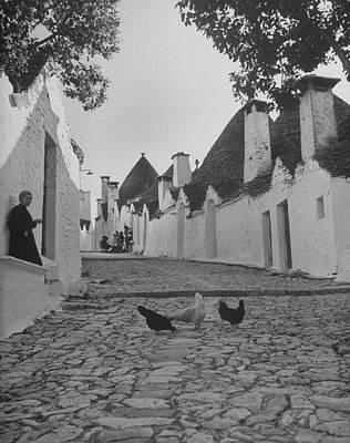 Photograph - Chickens In Cobblestone Street In Front by Alfred Eisenstaedt