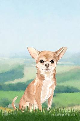 Animals Paintings - Chihuahua by John Edwards