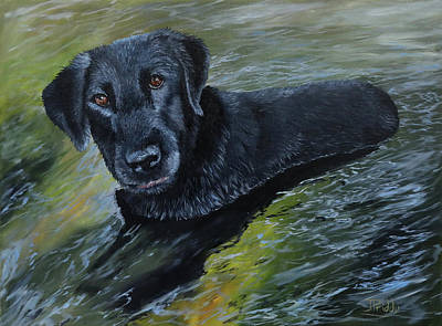 Painting - Chillin In The Water by Jan Priddy