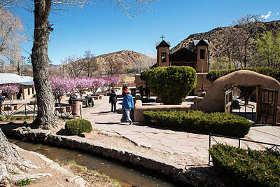 Photograph - Chimayo Cherry Blossoms And Potrero Ditch by Tom Cochran