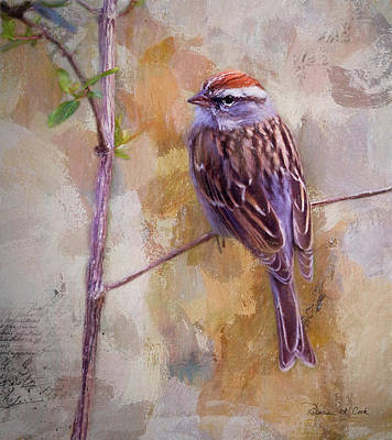 Photograph - Chipping Sparrow Portrait by Bellesouth Studio
