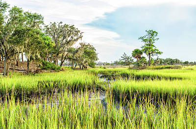 Photograph - Chisolm Island - Marsh At Low Tide by Scott Hansen