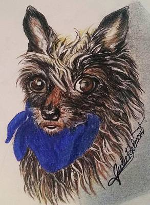 Drawing - Chloe's Close-up by Julie Belmont
