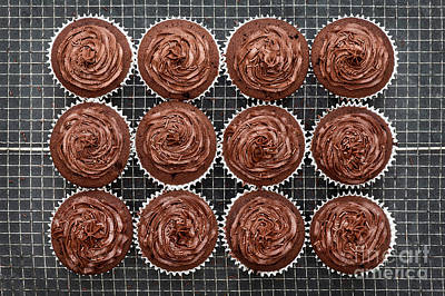 Photograph - Chocolate Cupcakes by Tim Gainey