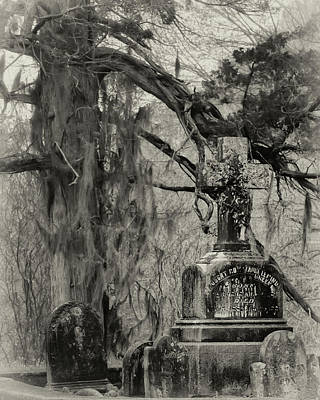 Photograph - Christ Church Graveyard by Susan Rissi Tregoning