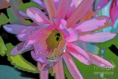 Wall Art - Photograph - Christmas Cactus In The Pink by Roslyn Wilkins