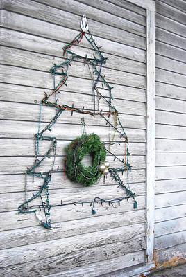 Photograph - Christmas Island Tree by JAMART Photography