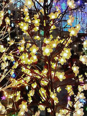 Photograph - Christmas Lights 4 by Dorothy Berry-Lound