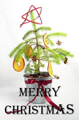 Photograph - Christmas Tree - Merry Christmas by Helen Northcott