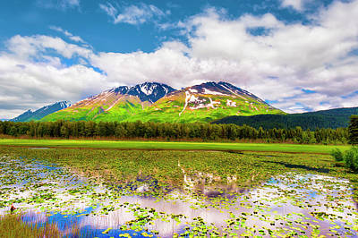 Photograph - Chugach National Forest In Alaska by Dee Browning