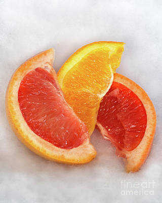 Photograph - Citrus by Susan Warren