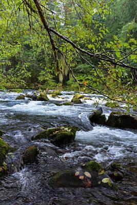 Photograph - Clackamas River Rapids by Steven Clark