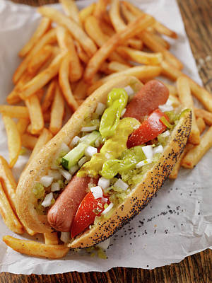 Pub Photograph - Classic Chicago Dog With Fries by Lauripatterson