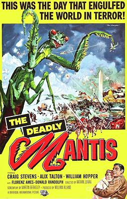 Royalty-Free and Rights-Managed Images - Classic Movie Poster - The Deadly Mantis by Esoterica Art Agency