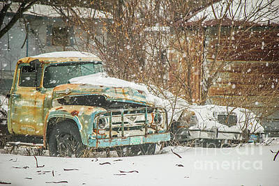 Photograph - Classics In The Snow by Sheila Skogen