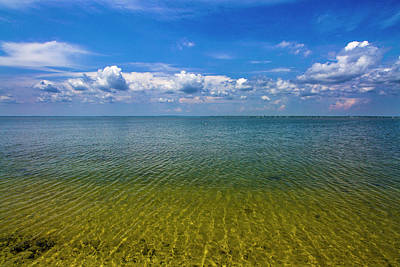 Photograph - Clear Ripples At Pikes Beach Bayside by Robert Seifert