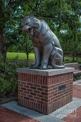 Photograph - Clemson Tiger - Gift From Student Body by Dale Powell