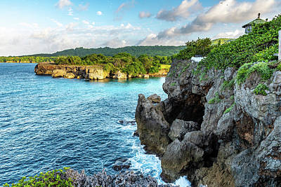 Photograph - Cliffside Views Portland Jamaica by Debbie Ann Powell