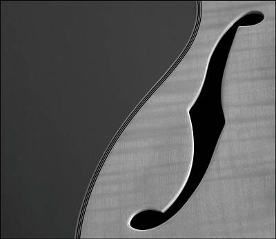 Photograph - Close Up Of Guitar by David Laws