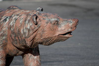 Photograph - Closeup Of Grizzly Bear Sculpture by Colleen Cornelius