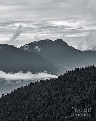 Photograph - Clouds And Fog by Alma Danison