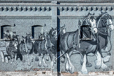 Photograph - Clydesdale Mural by Todd Klassy