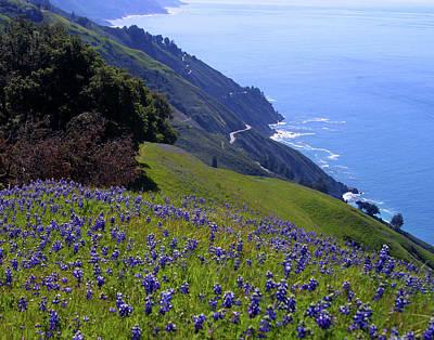 Achieving - Coastal Big Sur by TB Sojka