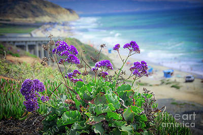 Photograph - Coastline Color by Ken Johnson