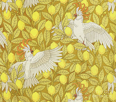 Drawing - Cockatoos With Lemons by Maurice Pillard Verneuil