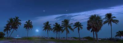 Photograph - Coconut Moon by Mark Andrew Thomas