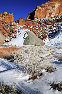 Photograph - Cohab Canyon Along Scenic Road In Capitol Reef by Ray Mathis