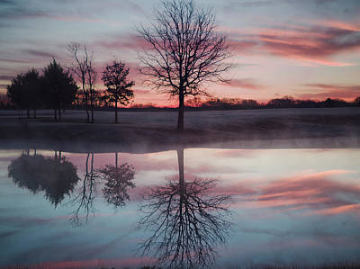 Photograph - Cold And Glassy Pond by Philip A Swiderski Jr