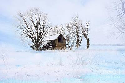 Photograph - Cold And Lonely by Larry Ricker