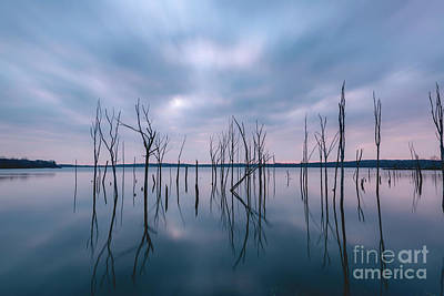 Photograph - Cold Reflections  by Michael Ver Sprill