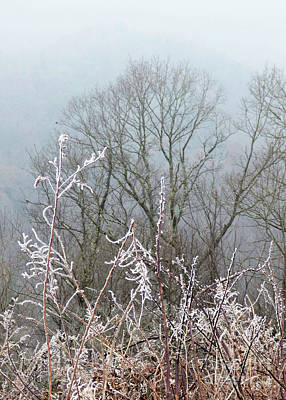 Claude Monet - Cold Winter Day by Sharon Williams Eng